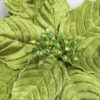 Christmas Poinsettia on Clip - Green