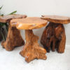 Reclaimed Teak Root - Stool/ Side Table