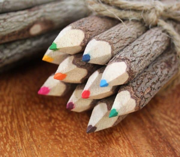 Bunch of 10 Coloured Pencils - Barron Imports