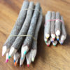 Bunch of 10 Coloured Pencils - Large