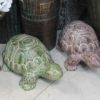 Outdoor Turtle - 2 Sizes in 3 Colours available $42 - $84